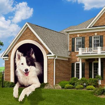 Thumbnail for Selling a Home With Pets